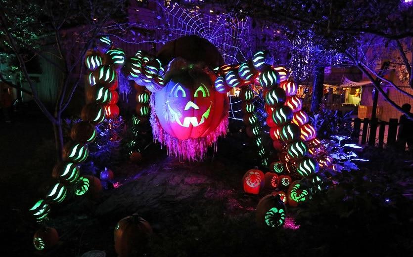 great-pumpkin-luminights-spider-835x520-1